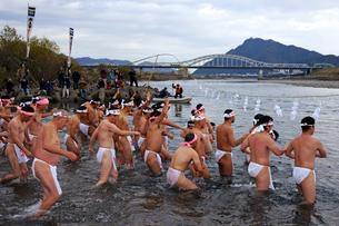 池ノ上みそぎ祭(池ノ上裸祭)  寒中禊 葛懸神社の写真素材 [FYI03930325]