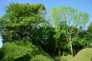 長篠城址 本丸(左)と二の丸(右) 中央は堀 の写真素材 [FYI03930343]