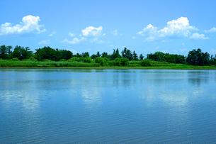 揖斐川と油島千本松原の写真素材 [FYI03930414]