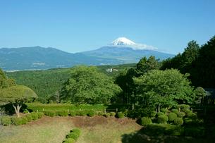 山中城址  西ノ丸・北西の土塁と富士山の写真素材 [FYI03930448]