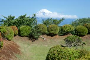 山中城址  西櫓の土塁と富士山の写真素材 [FYI03930451]