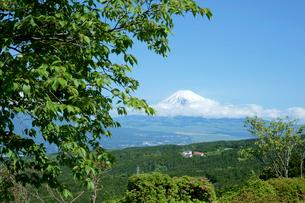 山中城址  西櫓・西木戸付近と富士山の写真素材 [FYI03930452]