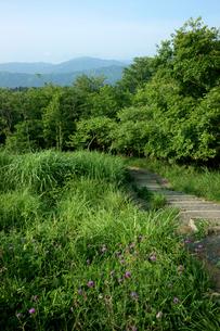 関ヶ原古戦場の写真素材 [FYI03930477]