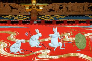 掛塚祭り 東町屋台の胴幕 貴船神社 10月第3土日曜日の写真素材 [FYI03930674]
