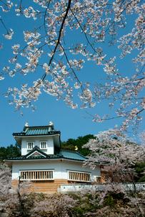 桜咲く小倉公園(小倉山城)の写真素材 [FYI03930748]