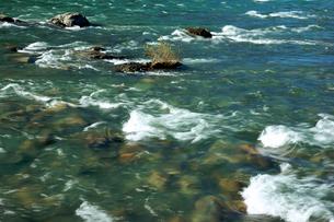 長良川の流れの写真素材 [FYI03930768]