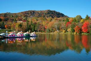 やはず池と紅葉の茶臼山の写真素材 [FYI03930853]