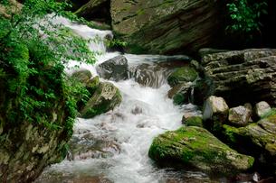 長良川の渓流の写真素材 [FYI03930866]