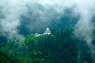 霧の郡上八幡城 堀越峠より望む の写真素材 [FYI03930908]