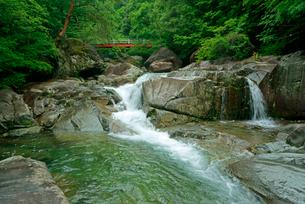 片知渓谷(かたぢけいこく) 千畳岩から上流の岳水橋を望む の写真素材 [FYI03930918]
