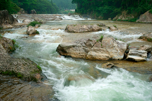 鳳来峡・板敷川(別称)宇連川の写真素材 [FYI03930920]