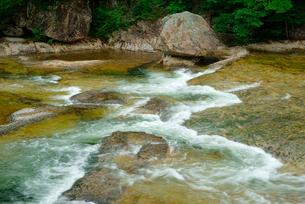 鳳来峡・板敷川(別称)宇連川の写真素材 [FYI03930923]