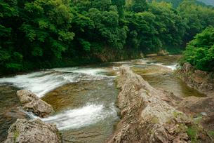鳳来峡・板敷川(別称)宇連川 の写真素材 [FYI03930924]