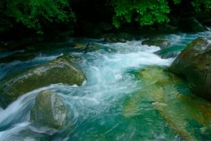清流 付知峡 東股谷川 の写真素材 [FYI03930935]