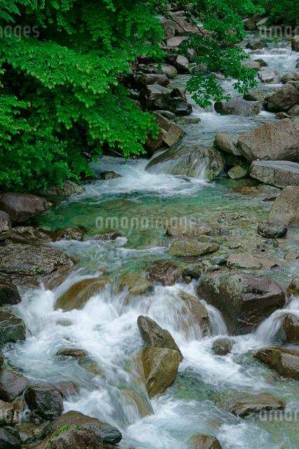 乙女渓谷・加子母川 の写真素材 [FYI03930936]