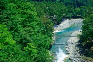 吊り橋(出会い橋) 付知川・付知峡の写真素材 [FYI03930949]