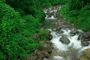 前谷川 の写真素材 [FYI03930950]