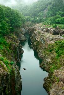 飛水峡 上麻生橋からの上流方面 の写真素材 [FYI03930961]