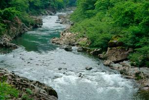 中山七里・飛騨川 の写真素材 [FYI03930968]
