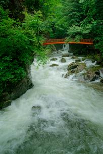 巌立峡(がんだてきょう) 濁河川の渓流 三ツ滝を望むの写真素材 [FYI03930974]