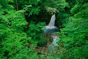 竜神の滝 夕森公園 の写真素材 [FYI03930978]