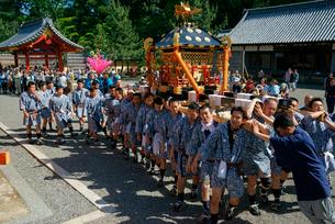 神輿渡御 南宮大社 例大祭 5月5日 の写真素材 [FYI03930992]
