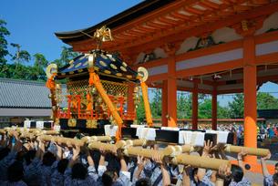 神輿渡御 南宮大社 例大祭 5月5日 の写真素材 [FYI03930993]