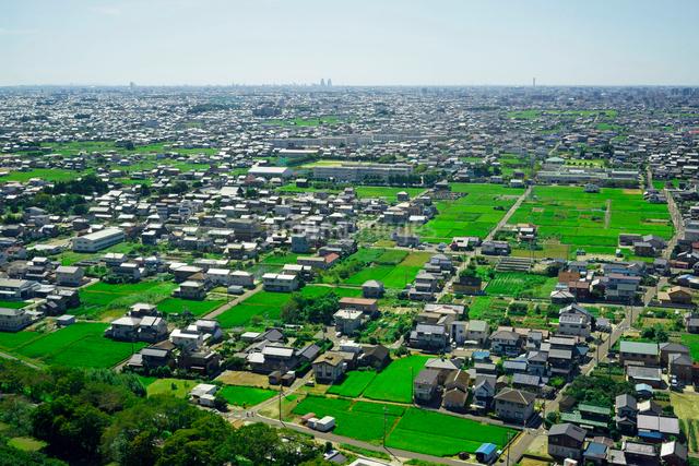名古屋市街遠望,ツインアーチ138より南を望むの写真素材 [FYI03931012]