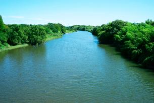 境川・旧木曽川,東方を望む,の写真素材 [FYI03931016]