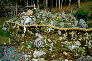 さざれ石,の写真素材 [FYI03931018]