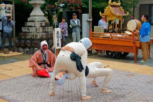 平方勢獅子(ひらかたきおいじし)天狗の舞,八幡神社,毎年10月第2日曜日の写真素材 [FYI03931046]