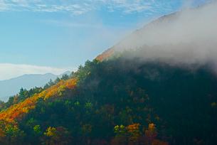 霧の鳥居峠・旧中山道より南東を望む,の写真素材 [FYI03931052]