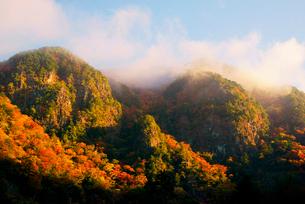 紅葉の屏風岩,中山七里,飛騨木曽川国定公園,の写真素材 [FYI03931119]