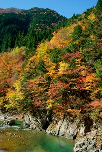 紅葉・馬瀬川,の写真素材 [FYI03931121]