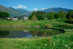 水田,木曽駒ヶ岳を望むの写真素材 [FYI03931180]