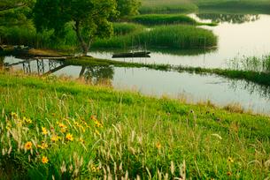 揖斐川と川舟の写真素材 [FYI03931192]