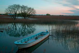 夜明け,揖斐川と川舟の写真素材 [FYI03931193]