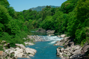 木曽の棧付近の渓谷,木曽川の写真素材 [FYI03931232]