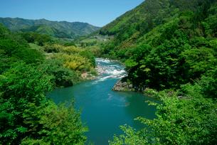 新緑の木曽川,木曽市場を望むの写真素材 [FYI03931234]