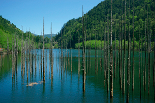 御岳自然湖,王滝川の写真素材 [FYI03931239]