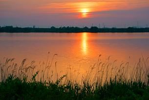 長良川の夜明けの写真素材 [FYI03931250]