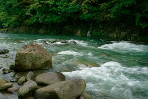 吉田川 長良川支流の写真素材 [FYI03931255]
