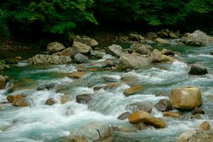 吉田川 長良川支流 坂本大橋付近の写真素材 [FYI03931256]