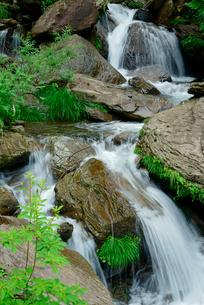 渓流 清滝の下流の写真素材 [FYI03931264]