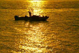 早朝のシジミ漁 揖斐川の写真素材 [FYI03931276]