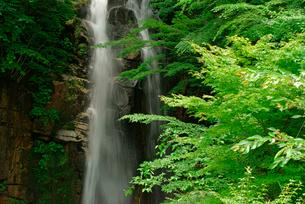 小野の滝の写真素材 [FYI03931277]