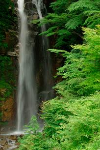 小野の滝の写真素材 [FYI03931278]