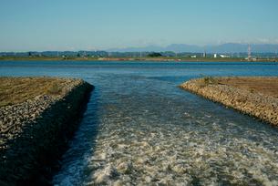 排水・立田排水機場より木曽川に流れ入る立田輪中の悪水の写真素材 [FYI03931279]