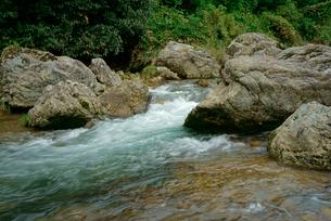 津保川 長良川支流 川上橋の上流の写真素材 [FYI03931351]