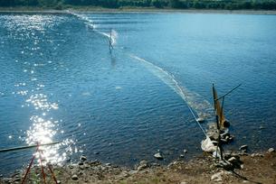 長良川 瀬張り網漁の仕掛けの写真素材 [FYI03931379]